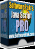 Java Script Pro