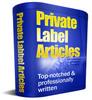 Thumbnail 25 Business Outsourcing PLR Articles