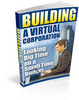 Thumbnail Building A Virtual Corporation with Master Resale Rights