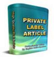 Thumbnail 6300 PLR Articles