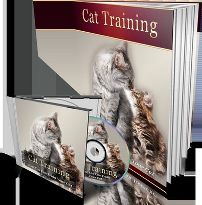 Product picture Cat Training MP3 Audio Book and E-book with MRR